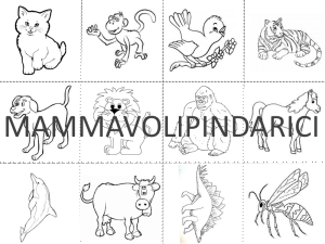 MEMORY ANIMALI.pgn