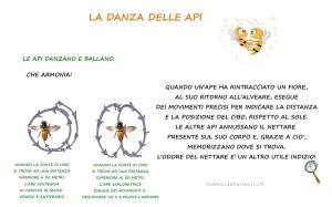 DANZA DELLE API