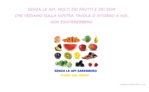 MONDO SENZA API